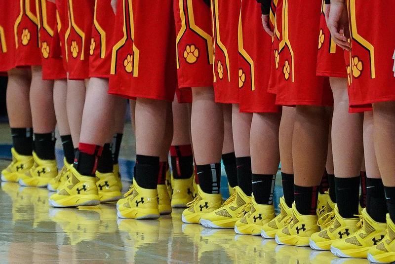 Batavia Girls Basketball Team
